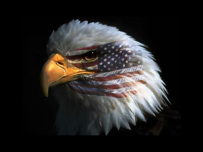 USA-united-states-of-america-300318_1024_768
